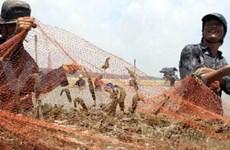美国首次裁定越南对美国虾类产品出口不存在倾销行为