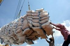 从年初到3月14日越南大米出口量达逾90万吨