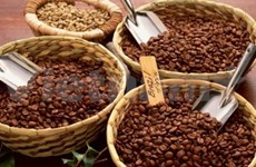 2013年头两个月越南咖啡出口额达6.72亿美元