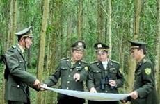 越南社区林业国际研讨会在顺化市举行