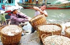 广宁省将致力发展云屯岛县成为国际海洋经济区