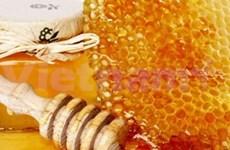 欧盟承认越南新鲜蜂蜜的质量