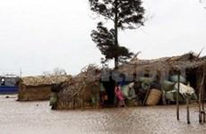 越南出台2012—2020年应对气候变化国家行动计划