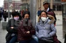 中国科学家确认H7N9病毒可从家禽传染给人
