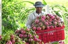 越南与日本签署农业合作协议