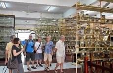 年初以来芽庄接待外国游客量22万人次