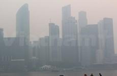 新加坡政府拟定烟霾预警系统