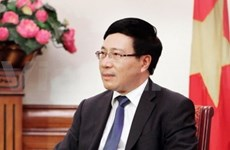 越南外长范平明:越印混委会第15次会议取得许多重要结果