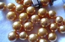 珍珠--越南富国岛独特的旅游产品