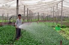 河内农产交易平台