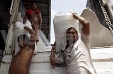 菲律宾计划从越南或泰国进口10万吨大米
