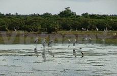 瑞典协助越南沿海地区提升气候变化应对能力