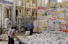 今年第四季度越南大米出口总量有望达180万吨
