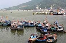 第11号台风逼近越南中部 各省市严阵以待