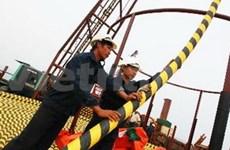 越南电力供电网覆盖广宁省姑苏岛县