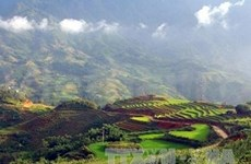 老街省沙巴县两个景点成为越南吉尼斯纪录