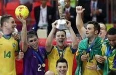 世界冠军队将参加2013年胡志明市国际室内足球锦标赛