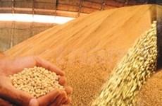 越南与巴西双向贸易额猛增