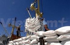 2014年菲律宾需要进口大量大米