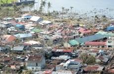 """菲律宾超强台风""""海燕""""灾后重建工作需要五年时间"""