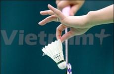 2013年越南羽毛球公开赛落下战幕