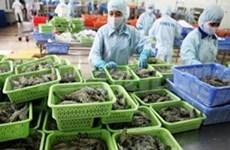 越南成为世界虾类产量第三大国