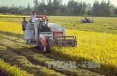 越南与韩国加强农业领域合作