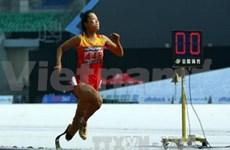 第七届东残会最后一天比赛:越南共夺得48枚金牌