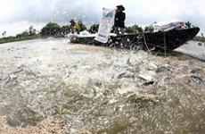 2014年九龙江三角洲水产养殖水面积将增加至80万公顷