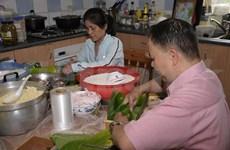 旅居海外越南人喜迎2014年新春