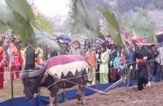 越南注重确保少数民族的合法权益
