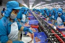美国的保护农业政策影响越南查鱼出口