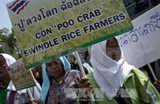 泰国反贪污委员会即将传唤英拉总理