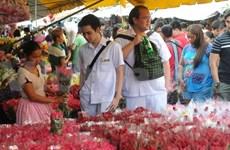 菲律宾旅游业保持增长势头