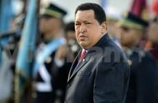 《乌戈·查韦斯政治思想》书籍在越南亮相