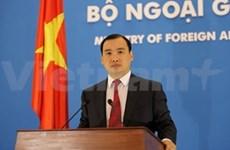 越南外交部发言人:越南抓紧办理相关手续将武家博送回国