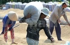 越南公布九龙江三角洲地区农业与农村发展规划