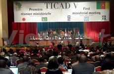 越南承诺协助非洲各国确保粮食安全