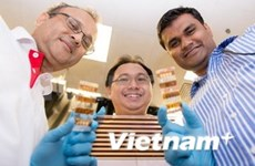 新加坡开展大规模太阳能项目试验