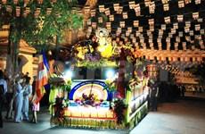 越南全国各地欢庆佛历2558年佛诞大典