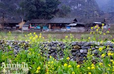 越南西北地区旅游业着力实现突破发展