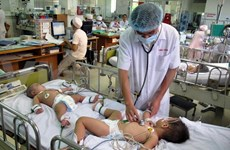 越南全国共发现手足口病病例20.5万例