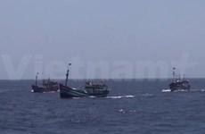美国众议员福布斯谴责中国致使东海紧张局势升级的行为