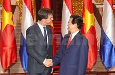 越南与荷兰发表联合声明