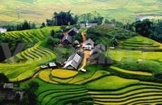 越南向来是安全友好且颇具吸引力的旅游目的地