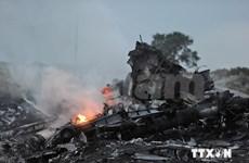 马来西亚立即调查马航MH17客机坠毁原因