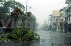 台风威马逊已登陆越南广宁省