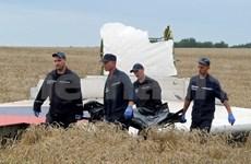 东盟呼吁对马航MH17事件进行全面、独立、透明的国际调查