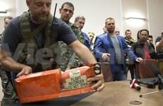 """乌克兰民间武装马航失事客机""""黑匣子""""交给马来西亚"""