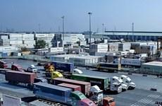 越南与埃及加强运输和后勤服务领域的合作